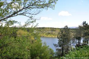 Foto Área Recreativa El Pinar y Parque Juan Pablo II 5