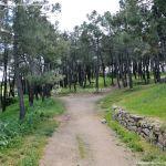 Foto Área Recreativa El Pinar y Parque Juan Pablo II 6