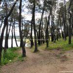 Foto Área Recreativa El Pinar y Parque Juan Pablo II 7