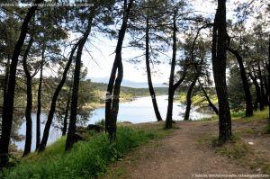Foto Área Recreativa El Pinar y Parque Juan Pablo II 8