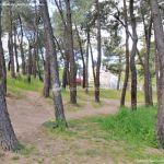 Foto Área Recreativa El Pinar y Parque Juan Pablo II 13