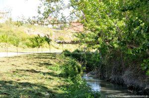 Foto Área de Recreo junto al Río Tajuña 3