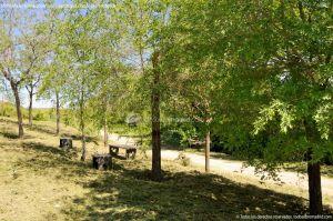 Foto Área de Recreo junto al Río Tajuña 4