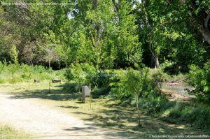 Foto Área de Recreo junto al Río Tajuña 6