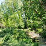 Foto Área de Recreo junto al Río Tajuña 9