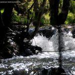 Foto Pesca en Río Madarquillos en Horcajo de la Sierra 17