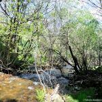 Foto Pesca en Río Madarquillos en Horcajo de la Sierra 22