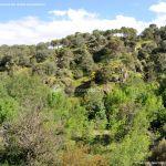 Foto Cañón del Río Guadalix 1