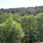 Foto Cañón del Río Guadalix 2
