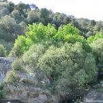 Foto Cañón del Río Guadalix 9
