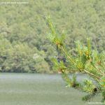 Foto Embalse de Miraflores de la Sierra 15
