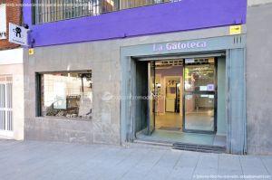 Fotos La Gatoteca 13