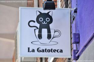 Fotos La Gatoteca 11
