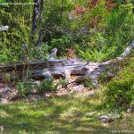 Foto Cascadas o Salto del Purgatorio 5