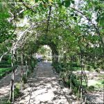 Foto Jardín del Principe Anglona 11