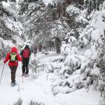 Foto Centro de Esquí Nórdico de Navafria 4