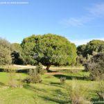 Foto Monte del Pilar 16
