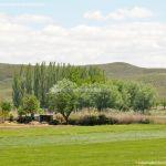 Foto La Vega en Titulcia 4