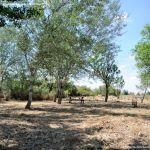 Foto Área Recreativa Soto de Bayona 31