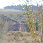 Foto Cueva de Pedro Fernández - Sima de las Yeseras 11