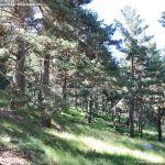Foto Área Recreativa Las Lagunillas 5