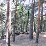 Foto Área Recreativa Peña Alta 39