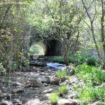 Foto Área Recreativa La Alberca Y La Tejera 21