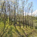 Foto Área Recreativa La Alberca Y La Tejera 29