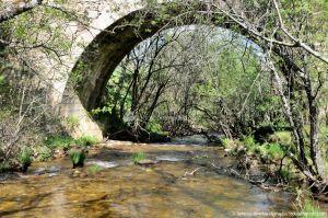 Foto Área Recreativa La Alberca Y La Tejera 40