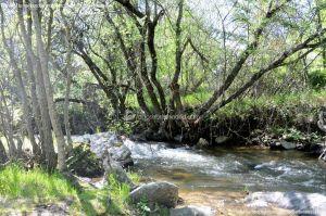 Foto Área Recreativa La Alberca Y La Tejera 46