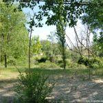 Foto Área Recreativa Parque Lineal Río Guadalix 4