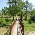 Foto Área Recreativa Parque Lineal Río Guadalix 7