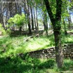 Foto Área Recreativa Valquejigoso 7