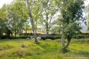 Foto Área Recreativa Puente De Madrid 9