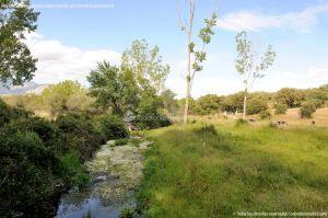 Foto Área Recreativa Puente De Madrid 15