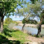Foto Área Recreativa Molino De La Aldehuela 12