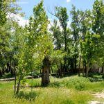 Foto Área Recreativa Molino De La Aldehuela 18