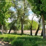Foto Área Recreativa Molino De La Aldehuela 19