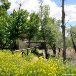 Foto Área Recreativa Molino De La Aldehuela 20