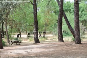 Foto Área Recreativa El Sotillo 5