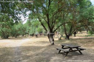 Foto Área Recreativa El Sotillo 9