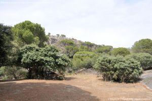 Foto Área Recreativa Lancha Del Yelmo 58
