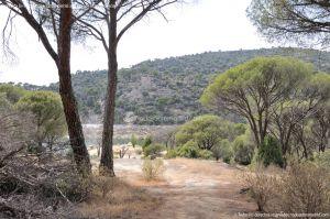 Foto Área Recreativa Lancha Del Yelmo 70