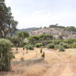 Foto Área Recreativa Lancha Del Yelmo 72