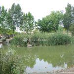 Foto Área Recreativa Laguna Del Pozairón 3