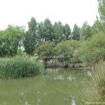 Foto Área Recreativa Laguna Del Pozairón 4