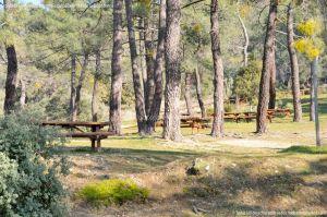 Foto Área Recreativa Cerro Robledillo 6