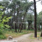 Foto Área Recreativa El Tomillar en San Lorenzo de El Escorial 18