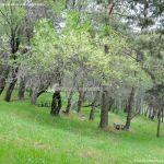 Foto Área Recreativa Los Llanillos 6