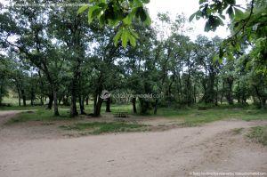 Foto Área Recreativa La Herrería 7